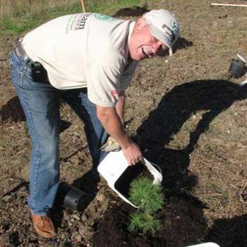 planting15